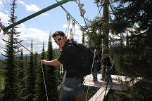 Walk in the Treetops at Whitefish Mountain Resort