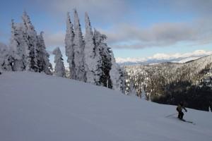 WMR Skiing