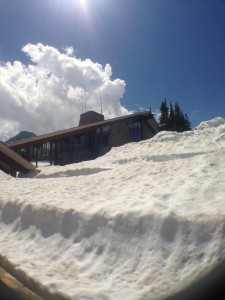 Stop #6: Logan Pass and its blanket of snow. (This photo was taken on Monday, June 17).
