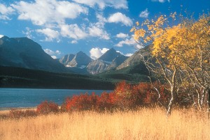 Autumn colors in Glacier National Park.