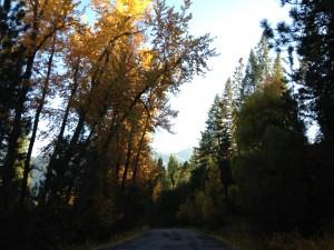 Exploring a Montana backroad.