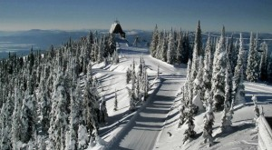 The view of the summit at Whitefish Mountain Resort.