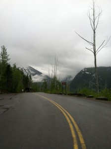 The view from the loop on the Going-to-the-Sun Road.