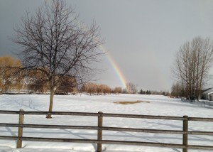 A rainbow after yesterday's rainstorm in Missoula.