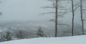 The view from Apgar Lookout webcam in Glacier National Park on the first day of spring
