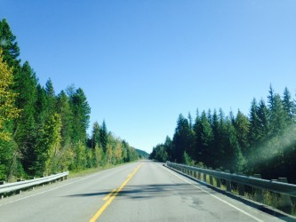 The road home, Highway 2, was framed by fall colors and sunshine.